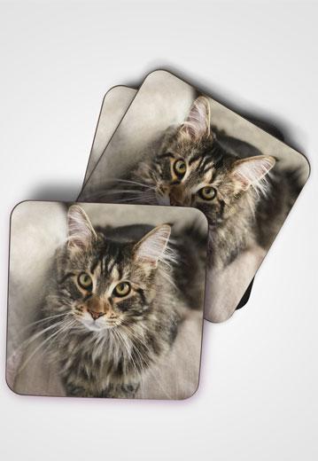 printed coasters worcester